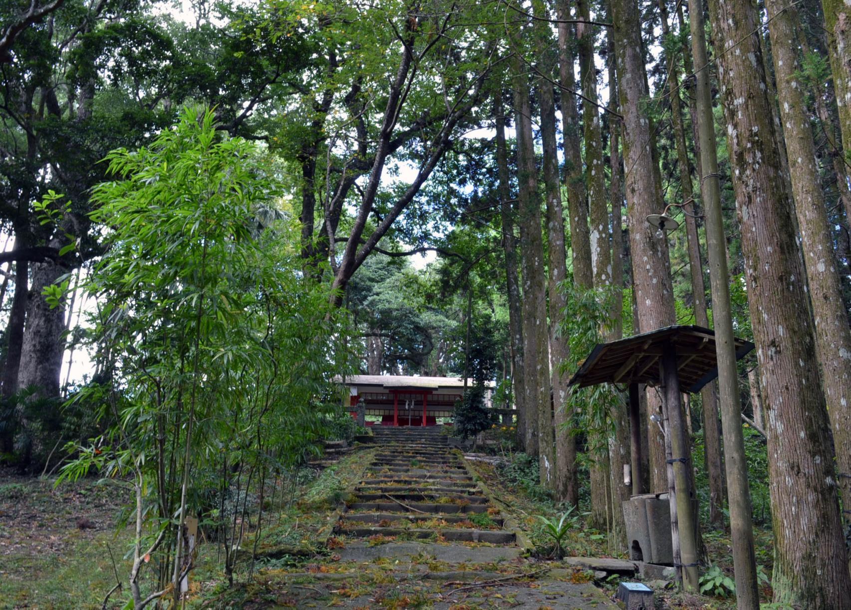 南方神社-1
