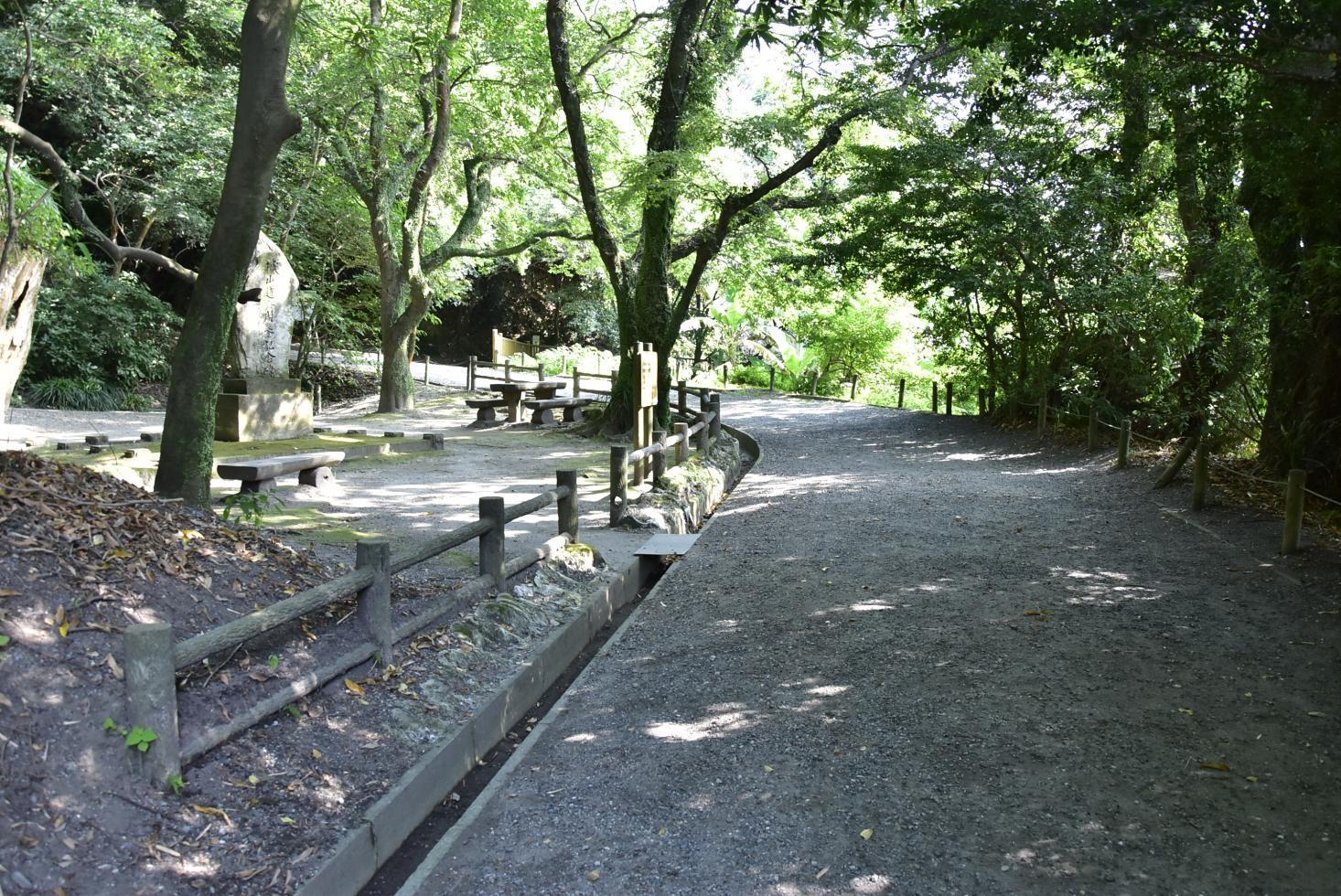 城山自然遊歩道-1