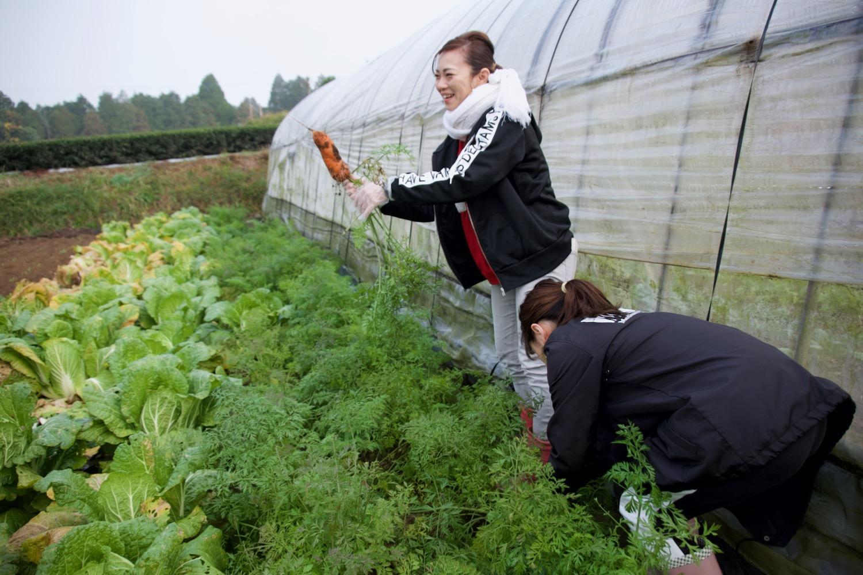 農家の気分をリアルに味わう、朝一番の「野菜収穫」!-3