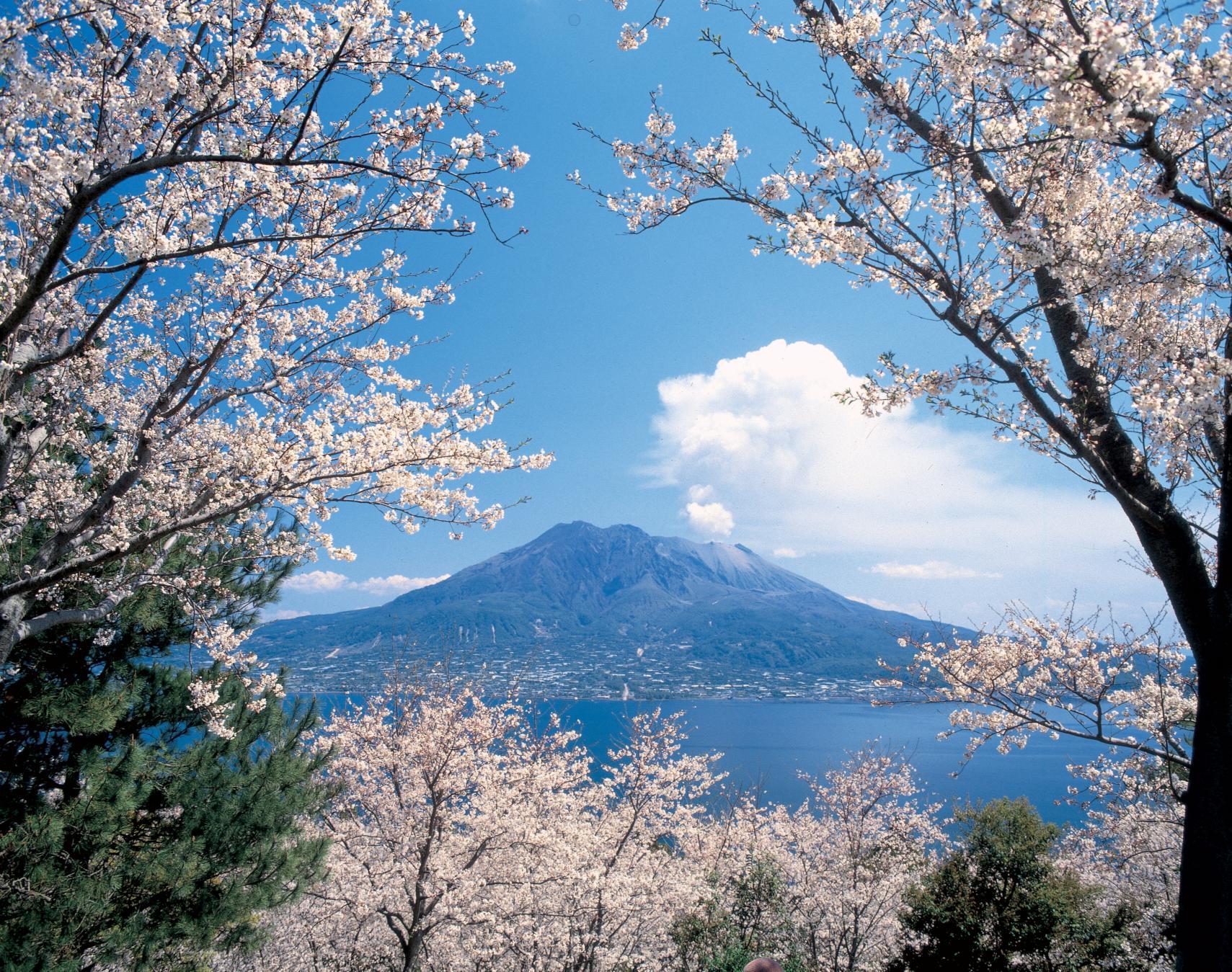 Let's enjoy Virtual Tours of Kagoshima!-1