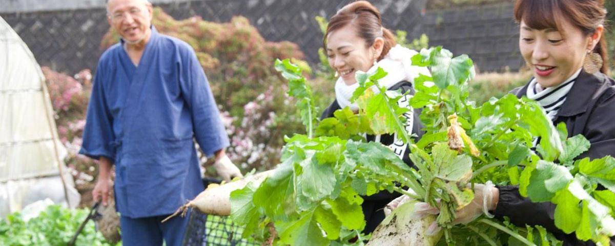 鹿児島の「実り」を収穫! 自然や文化、人々との体験交流を楽しむグリーン・ツーリズム-1