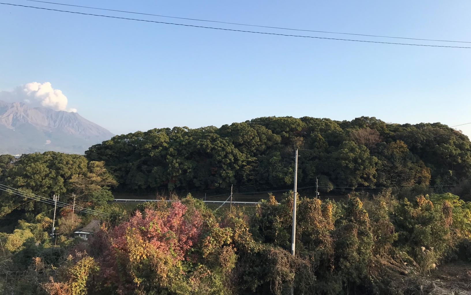 コース9【2】:日本遺産 薩摩の武士が生きた町~武家屋敷群「麓」を歩く~城山編-1