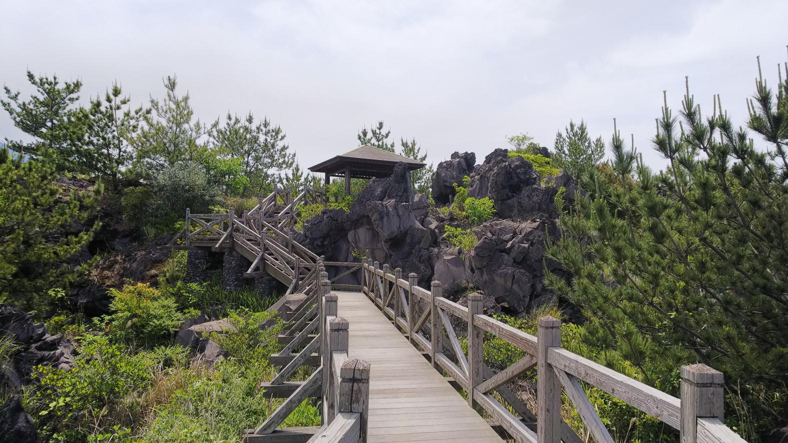 溶岩なぎさ遊歩道-2