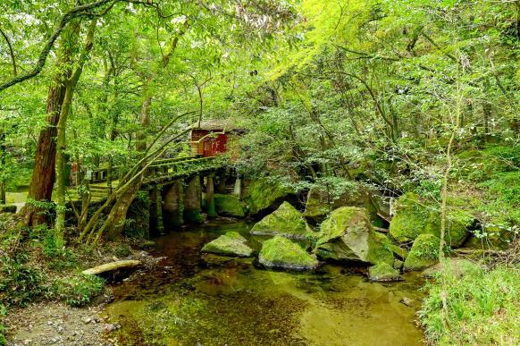 Jigenji Park-2