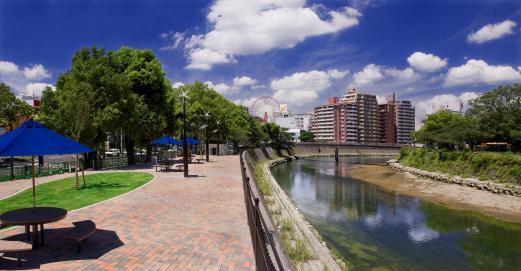 고쓰키가와 강변-3
