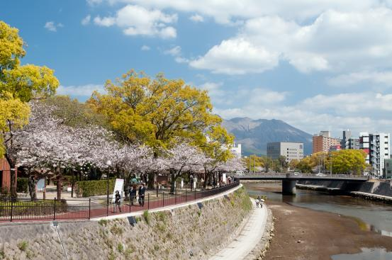 고쓰키가와 강변-0