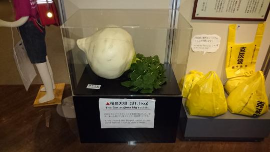 桜島ビジターセンター-6