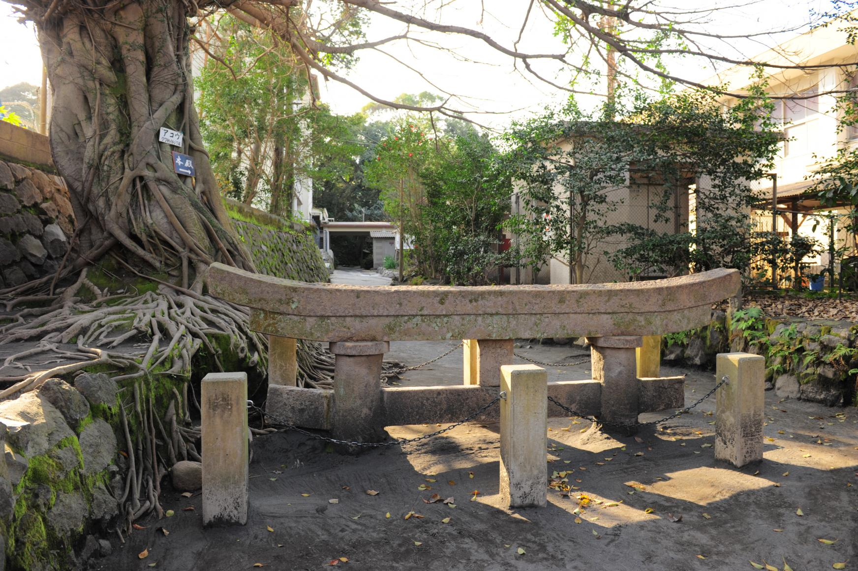 Kurokami Buried Torii(Shrine Gate)-0