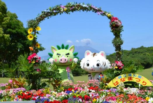 錦江湾公園はなまつり-1