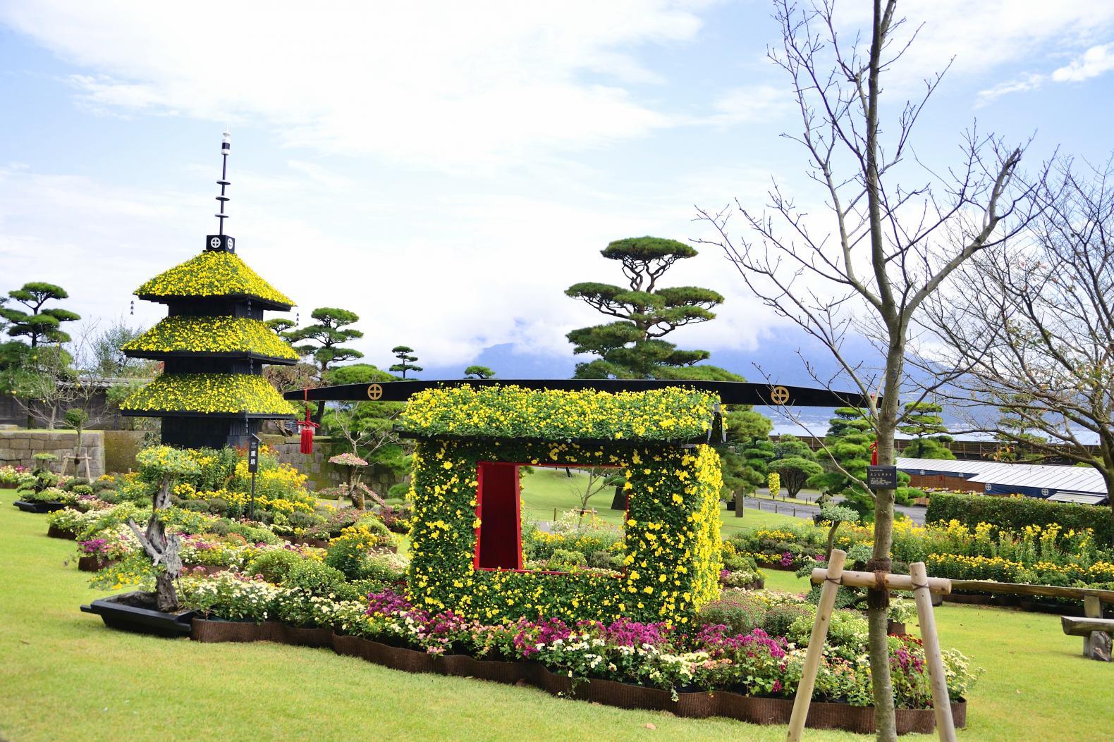 仙巌園 菊まつり-1