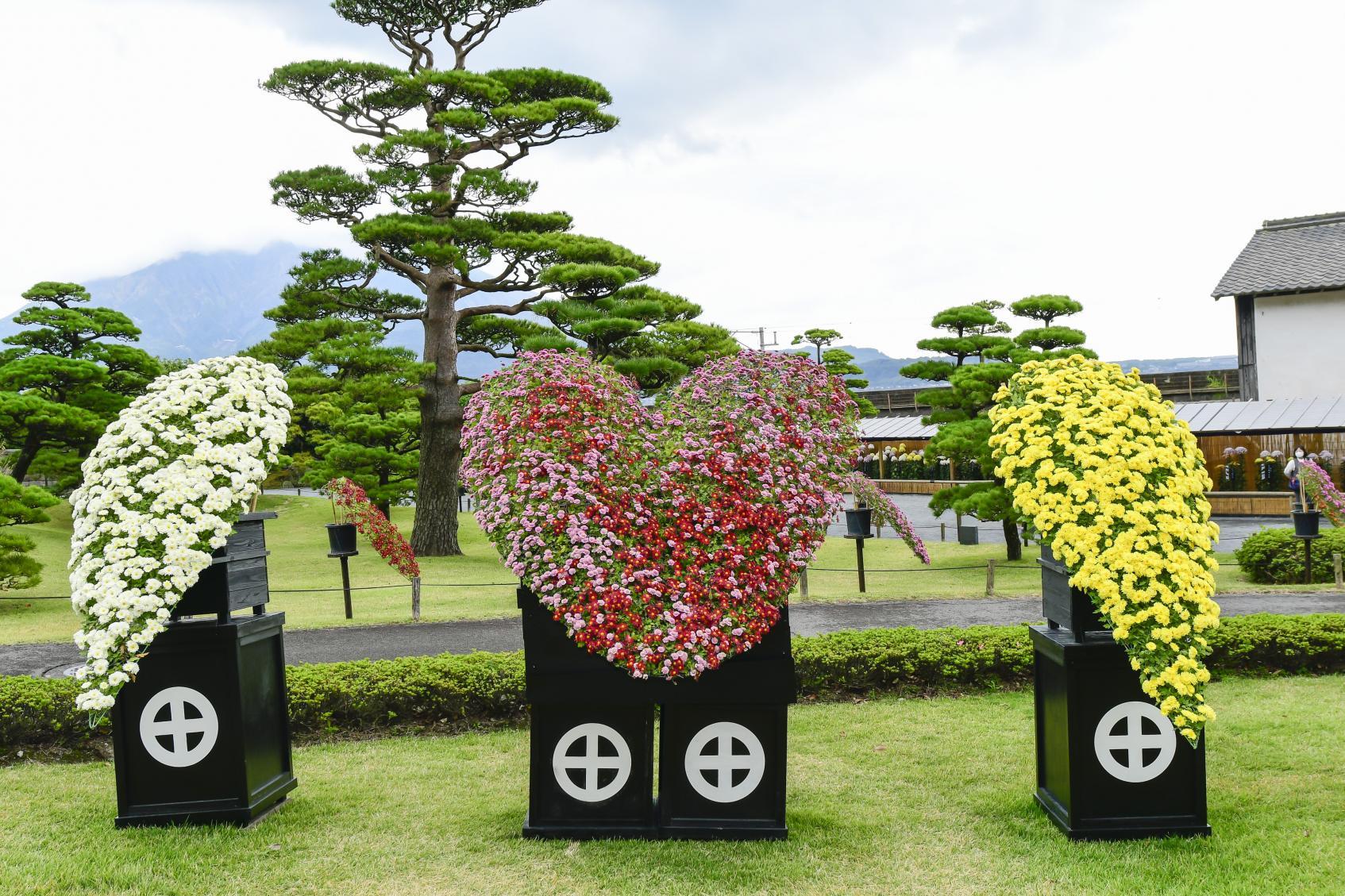 仙巌園 菊まつり-6