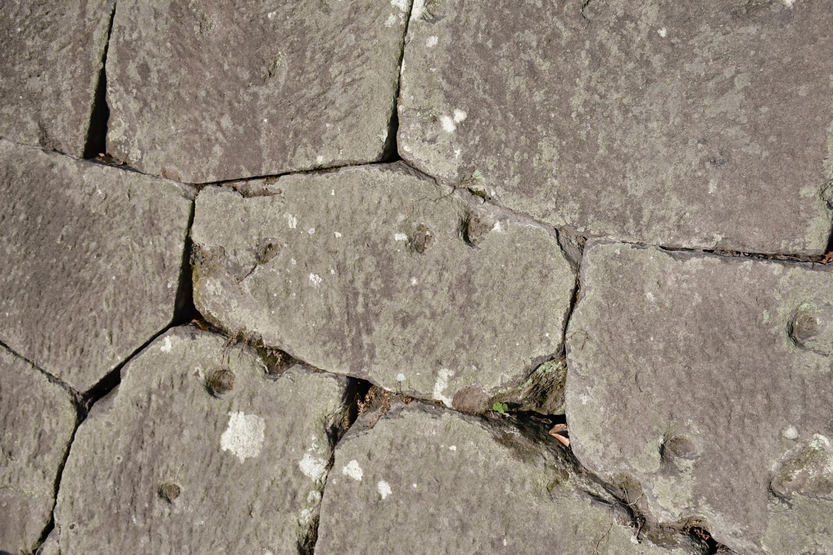 西南戦争の銃弾跡 | 観光スポット | 【公式】鹿児島市の観光・旅行情報 ...