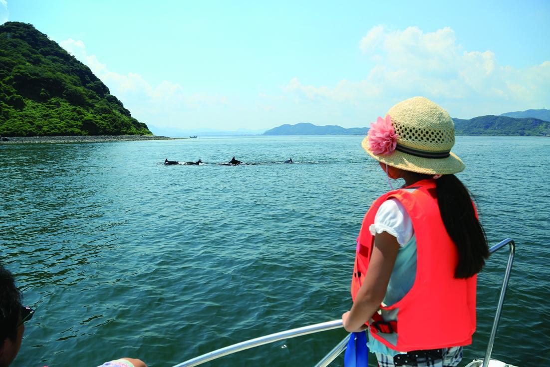 锦江湾巡航雾岛路线(出发及到达地点:Marine Port Kagoshima)-1