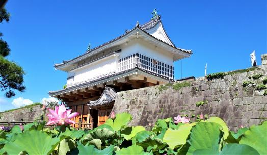 Tsurumaru Castle Ruins (Goromon Gate)-0