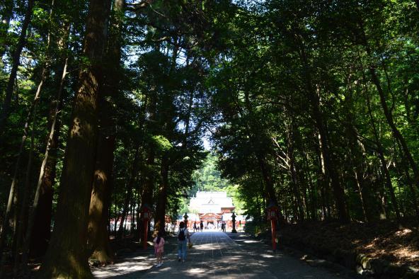[Kirishima City] Kirishima Jingu Shrine-5