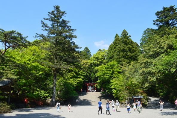 [Kirishima City] Kirishima Jingu Shrine-3