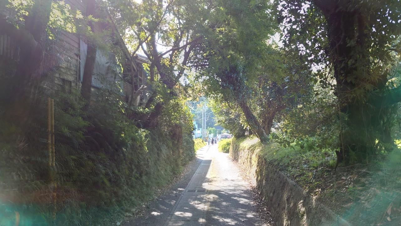 【日置市美山】 クラフトマンビレッジ美山-2