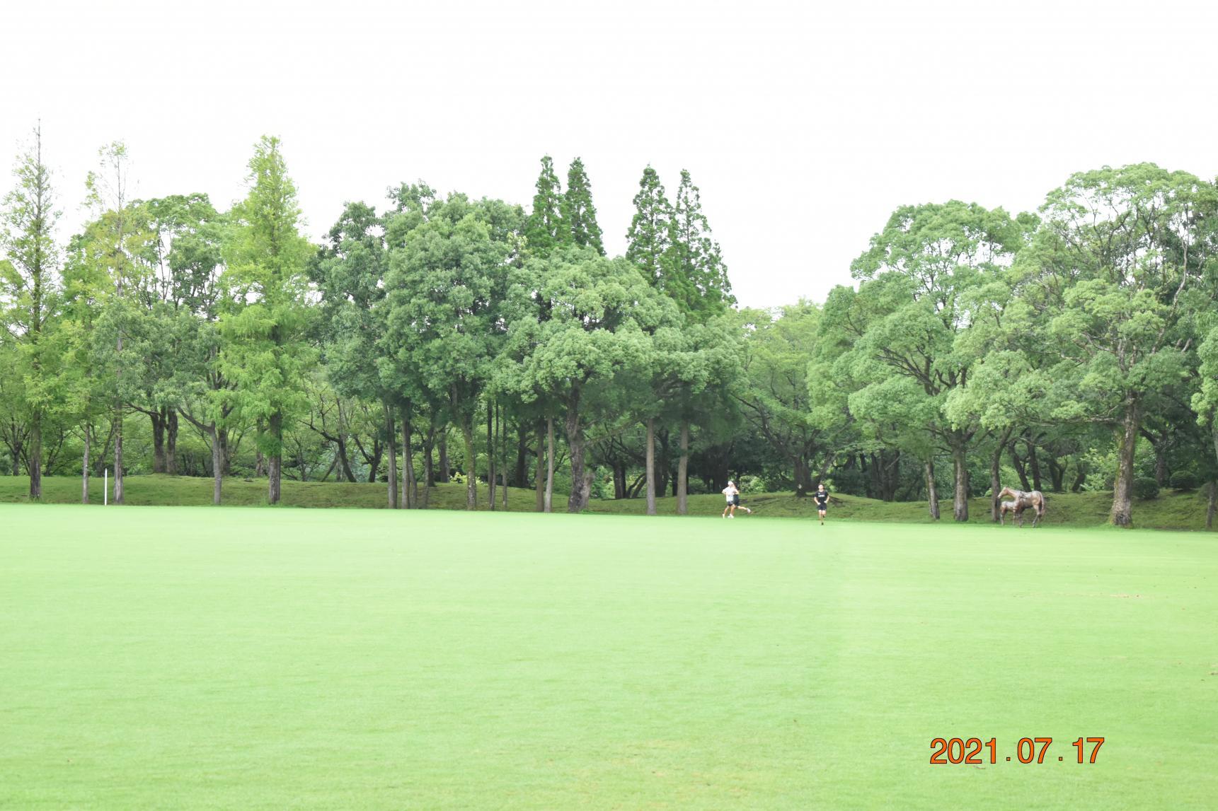 かごしま健康の森公園-5